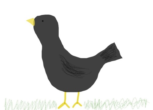 Since I've written this text (some three weeks ago) it seems as if all of the blackbirds have vanished from our garden. Now I've had enough of waiting for a photo opp, so I've just drawn one. I bet this is just one of their devious plans to mock me...