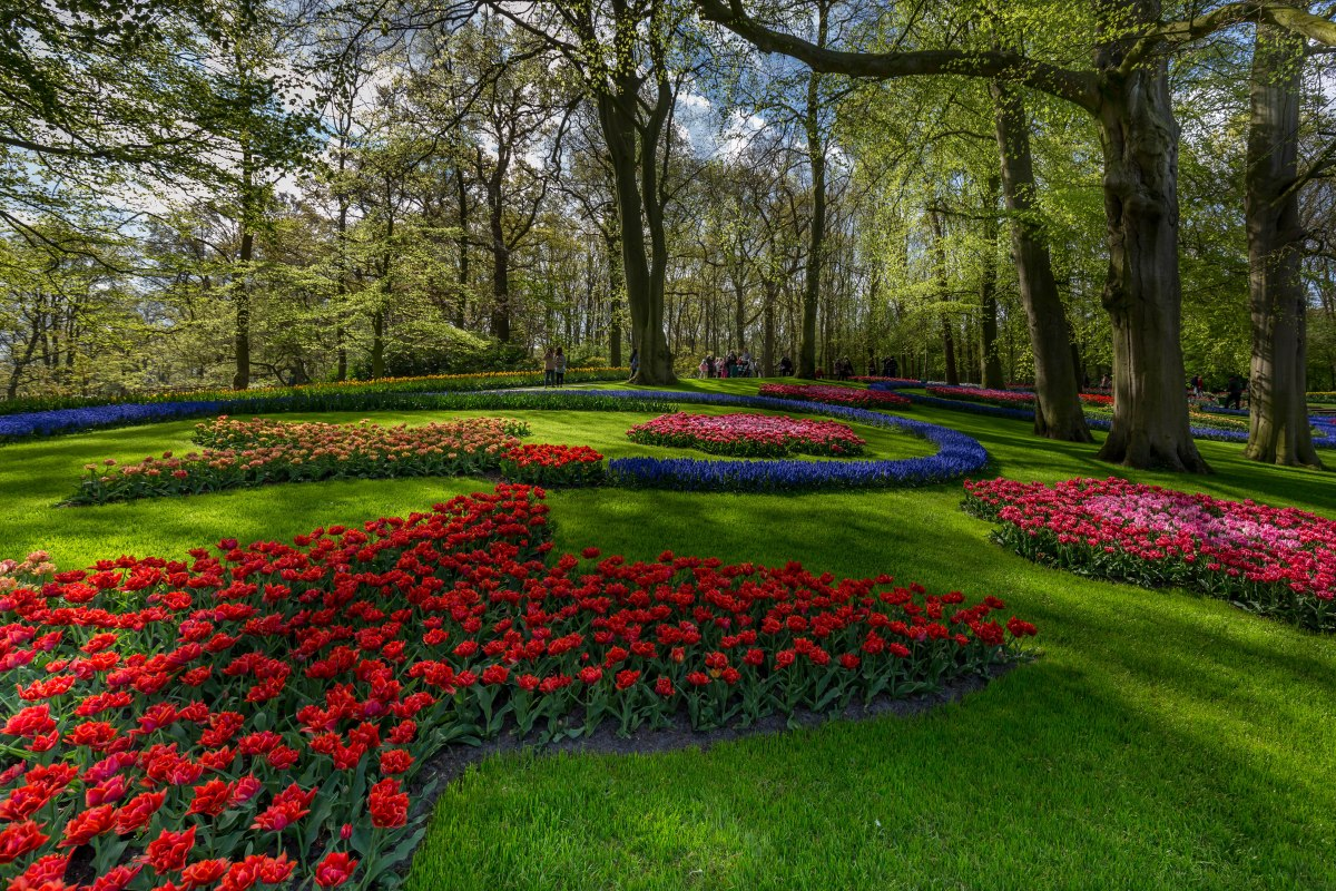 Seeing tulips at Keukenhof: There's something for everyone