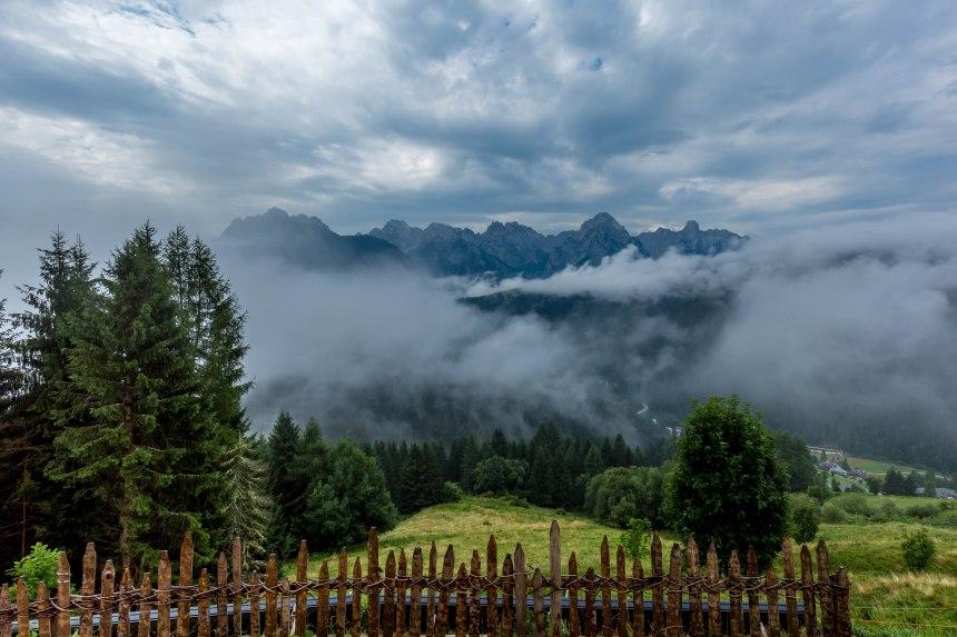 Bottondoro view