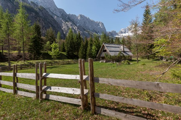 Hut in Back Trenta Valley