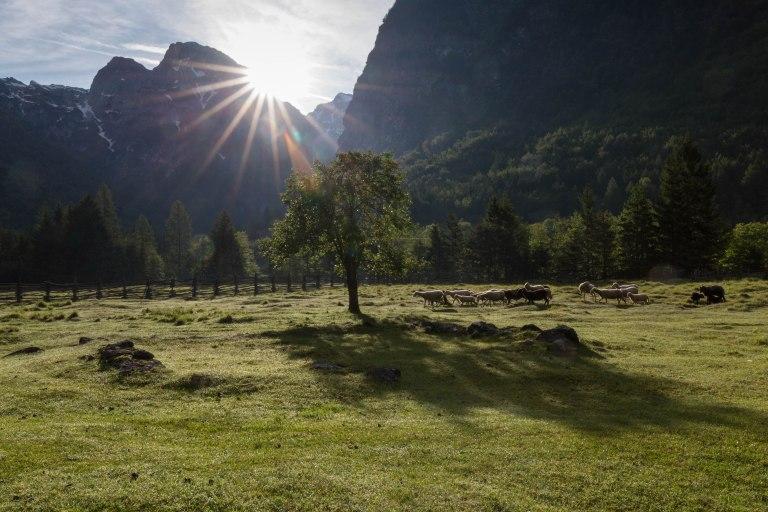 Trenta valley, Slovenia