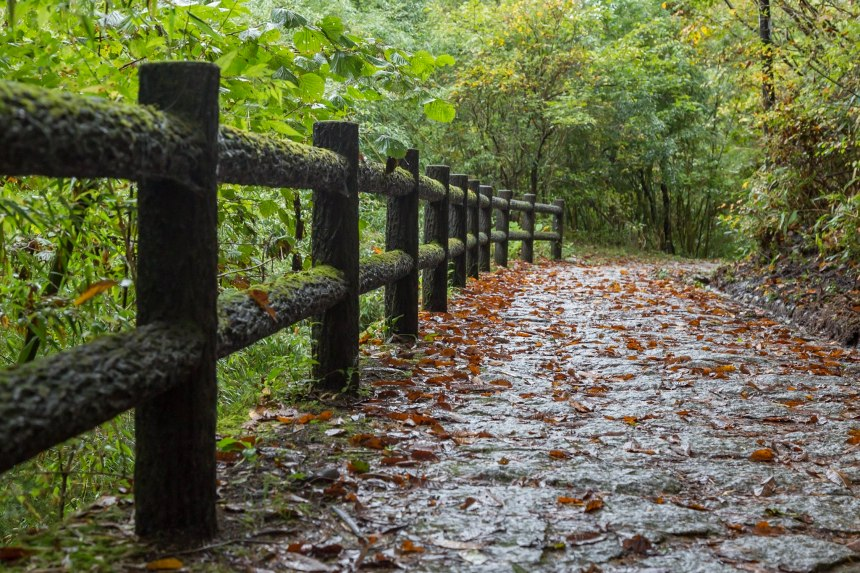 Magome - Tsumago trail